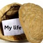 Nutshell my life