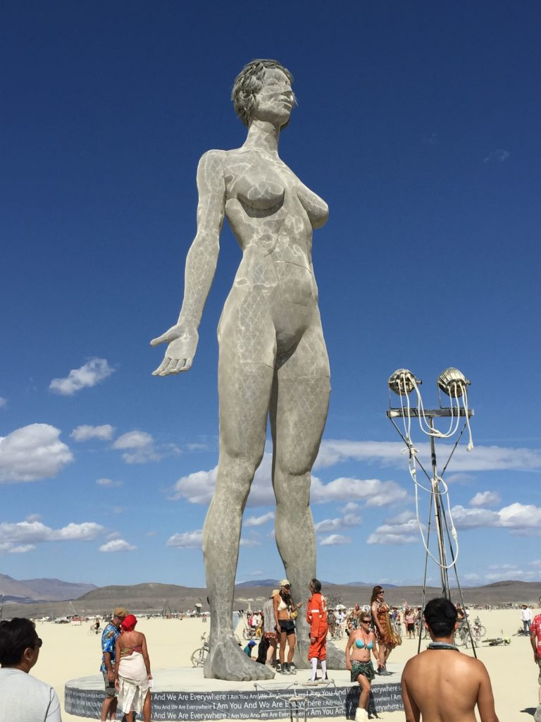 Insights from Burning Man 2015